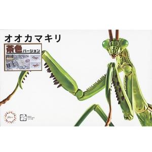 자유연구 시리즈 생물편 - 거대 사마귀(갈색)  [4968728170978]