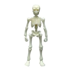 포즈스켈레톤 큰사람 컬러 시리즈(형광)  [4521121301563]