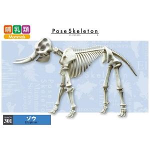 포즈스켈레톤 301 코끼리  [4521121301105]